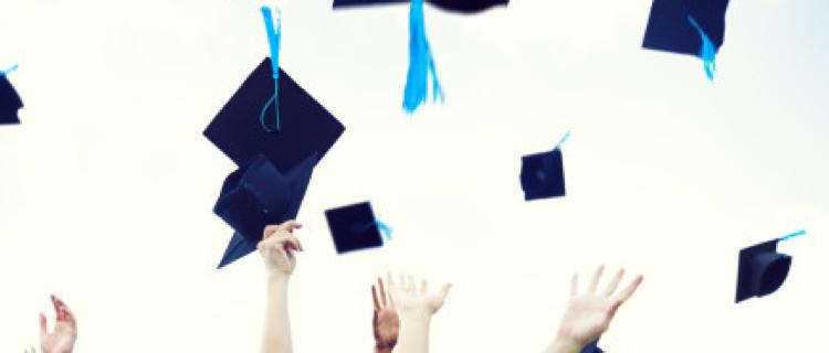 Schools and universities
