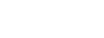 The Digital Insurer logo